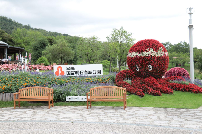 入場口のタコ型のお花