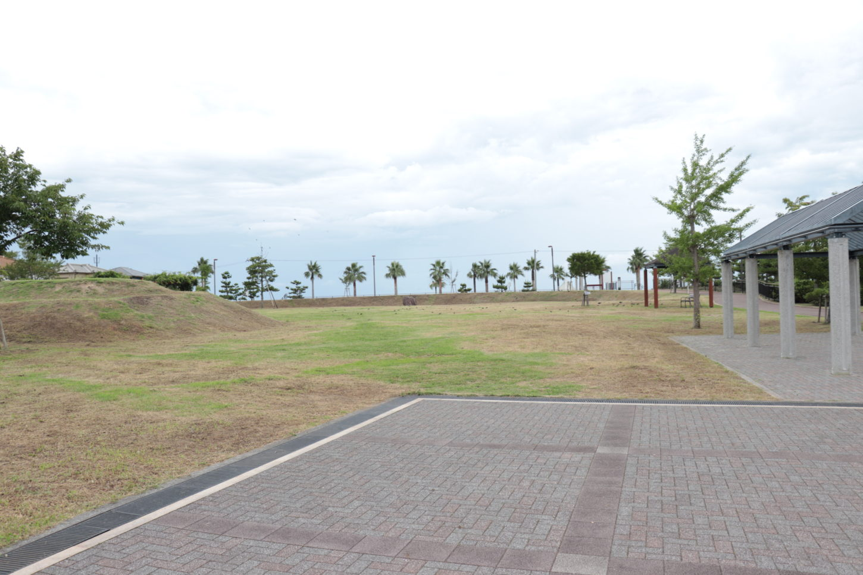 松江公園の芝生エリア