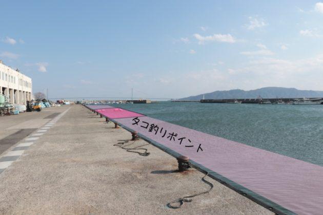 タコ釣り実績ポイント(林崎漁港)
