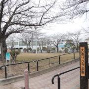 大道サクラ公園